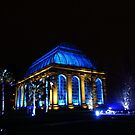 Changing Seasons (2) - Botanic Lights 2015 by Nik Watt