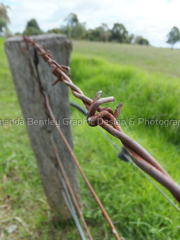 Barbwire Fence by AmandaBentley16