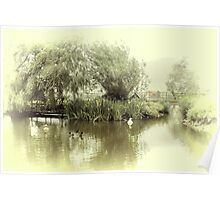 The Duck Pond Poster