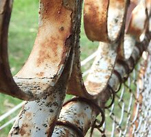 Old Rusted Gate by Amanda Bentley Graphic Design & Photography
