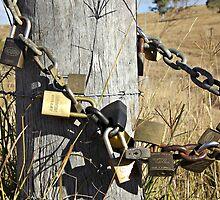 Locked Up! by Sarah Heit