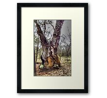 Close To Death # 2 Framed Print