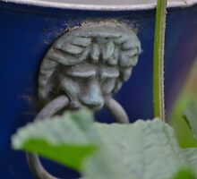 Garden Pot by David Wanden