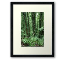 A study in green Framed Print