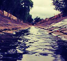 Creek  by David Wanden