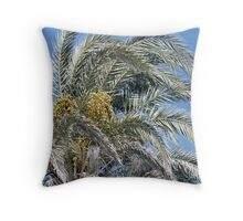 Date Palm Fronds in the Cyprus Sun Throw Pillow
