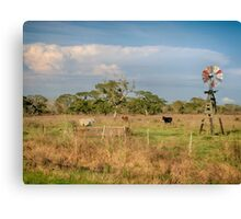 Windmail on a Prairie Canvas Print