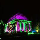 Changing Seasons (3) - Botanic Lights 2015 by Nik Watt