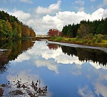 Long Pond Cloud Reflection NY Landscape by Christina Rollo