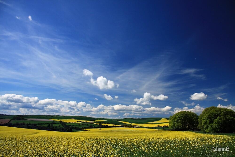 Fields Glow Yellow by GlennB