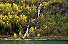 Mountain waterfall, Nordfjord, Norway by David Carton
