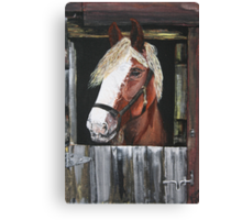 At The Stable Door Canvas Print