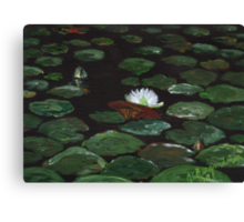Lake of Lily Pads Canvas Print
