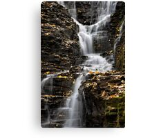 Winding Waterfall Landscape Canvas Print