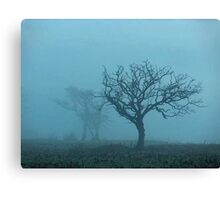 Trees in Fog Northumberland Canvas Print