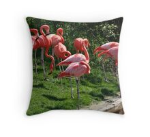 Pink Flamingoes at the Zoo Throw Pillow