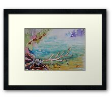 Fog and Reflection Duality Framed Print