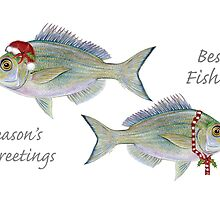 Best Fishes! by Tamara Clark