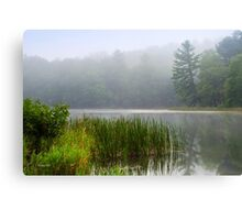 Tranquil Moments Landscape Canvas Print