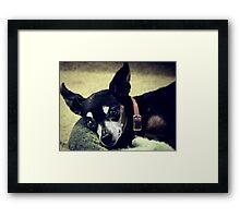 Lily Lilliputian (aka Lily) Framed Print