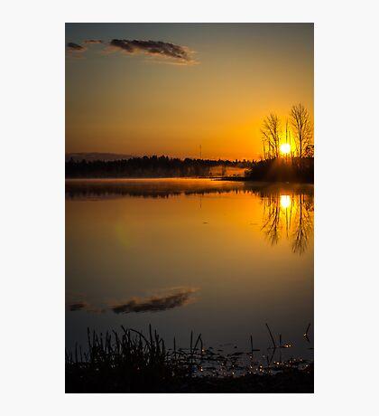 Amazed (Vertical) Photographic Print
