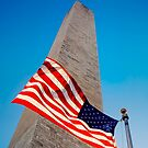 The Washington Monument, Washington DC by Ilker Goksen