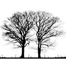 Two Trees on the Horizon by melmoth