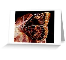 Owl Eye Butterfly Greeting Card