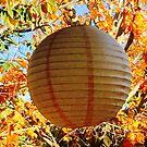 Leaves and Lantern Loving Light by Vesna ©