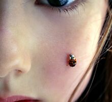 Ladybirds by AlexandraSophie