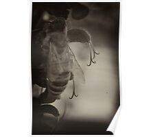 Bee and flower detail macro reversal reversed lens sepia vignette 1 Poster
