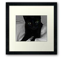 Suzie Framed Print