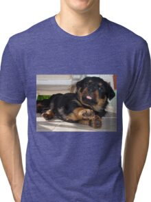Cute Rottweiler Puppy Being Playful Tri-blend T-Shirt