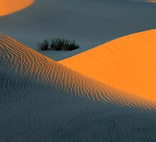 Death Valley Symphony Of Light by Bob Christopher