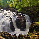 Falls Of Braan by Don Alexander Lumsden (Echo7)