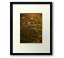 Sunset at Lawrence Framed Print