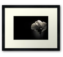 Howling at the moon for reasons unfathomable Framed Print