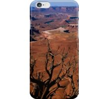 The Green River in Canyonland iPhone Case/Skin
