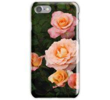 Rose in Rain 302 iPhone Case/Skin