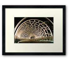 Bridge Cage Framed Print