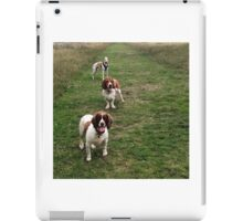 Erich, Monty and Red iPad Case/Skin