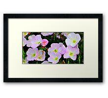 Purple Bliss Framed Print