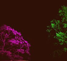 Retro Hologram Trees by Robert Plummer