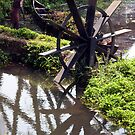Dike Water Wheel by phil decocco