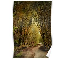The Long Winding Path . Poster