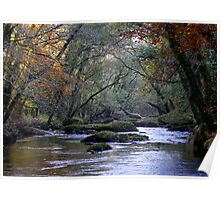River Dart  Poster