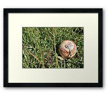 Play Ball!! Framed Print