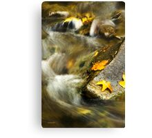 Autumn Creek Landscape Canvas Print
