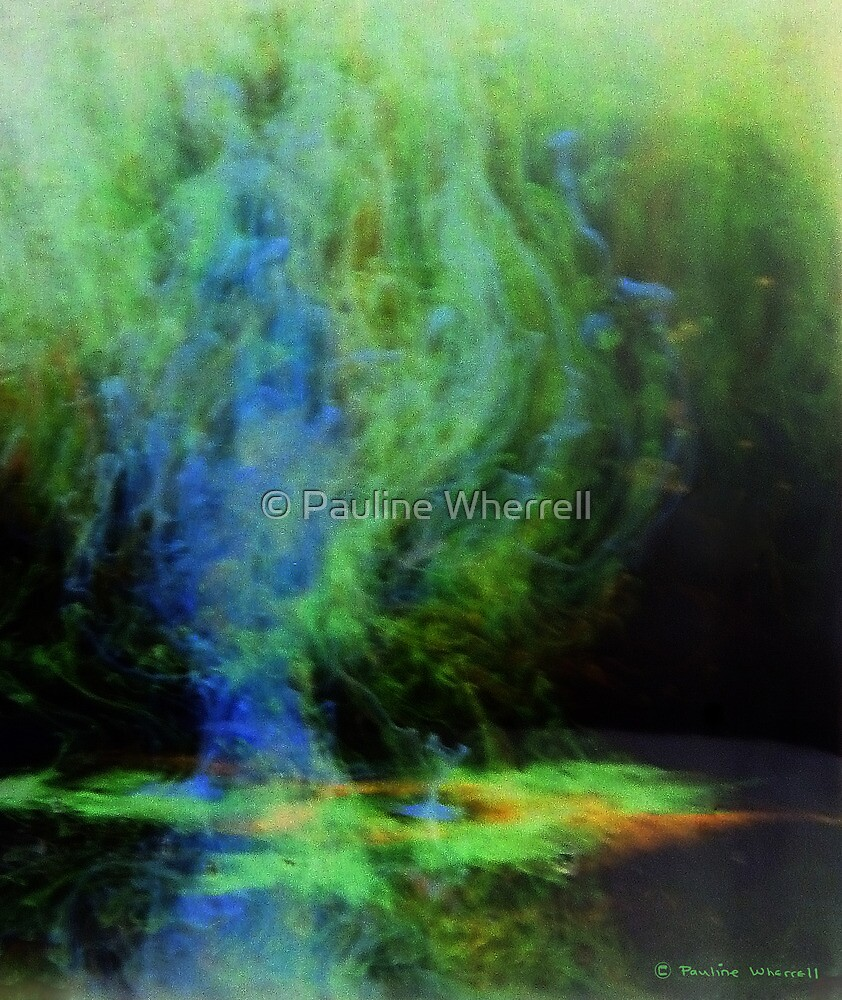 Apparitions by © Pauline Wherrell