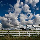 Medina county farm in Ohio by iamwiley
